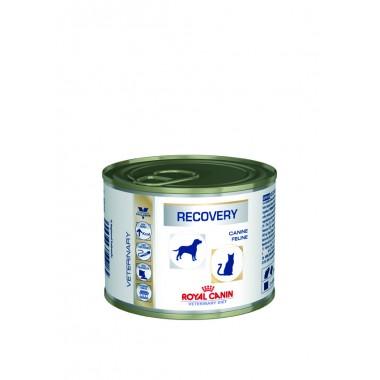 Dog/Cat Recovery konservuotas ėdalas