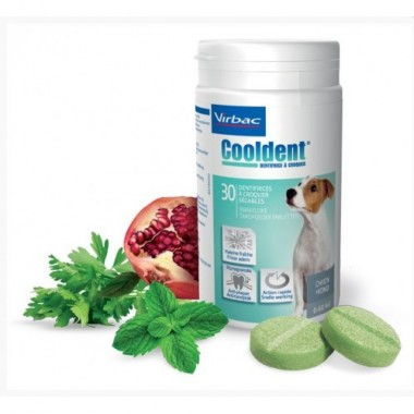 Cooldent, koncentruotos tabletės N30