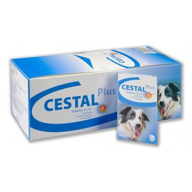 Cestal dog Plus , tabletė nuo kirminų