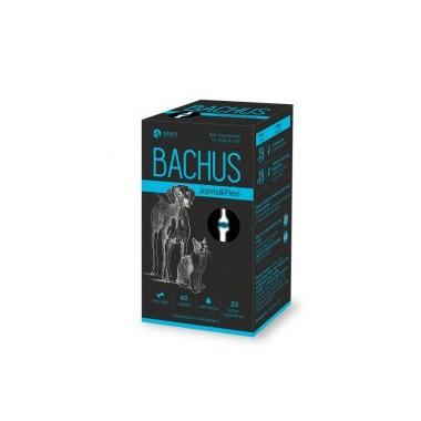 Bachus Joints&Flexi, (N60) lankstiems sąnariams