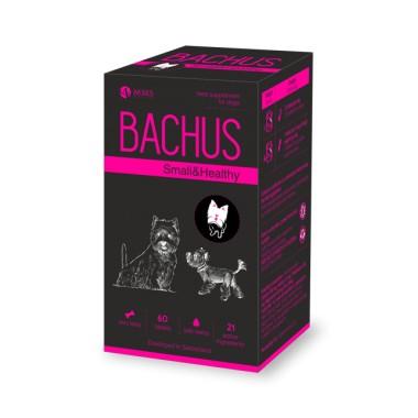 Bachus Small&Healthy, (N60) mažas ir sveikas
